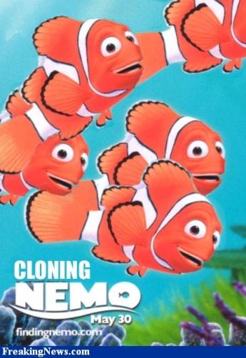 Cloning Nemo