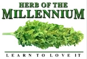 Marijuana will jump start our economy and make many people healthier and happier!!