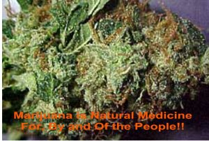 marijuana-is-natural-medicine