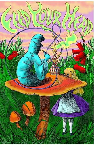 Les eucaryotes et autres mycètes du hippie Feed-your-head
